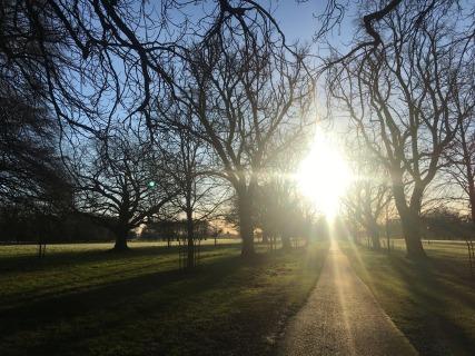 Dublin's Phoenix Park