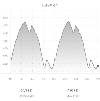 4 mile elevation