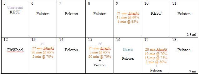 AlterG 1-2