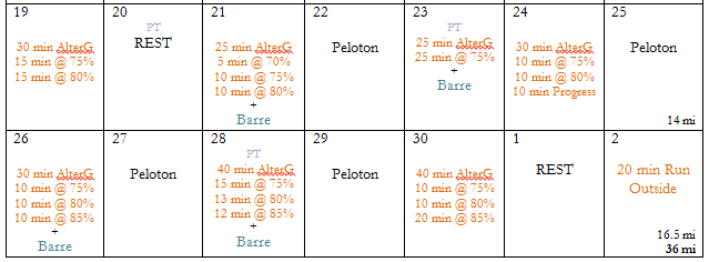 AlterG 2-3